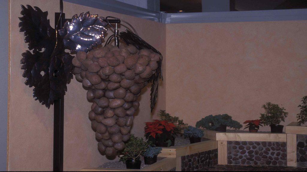 Grappolo d'uva con ciottoli